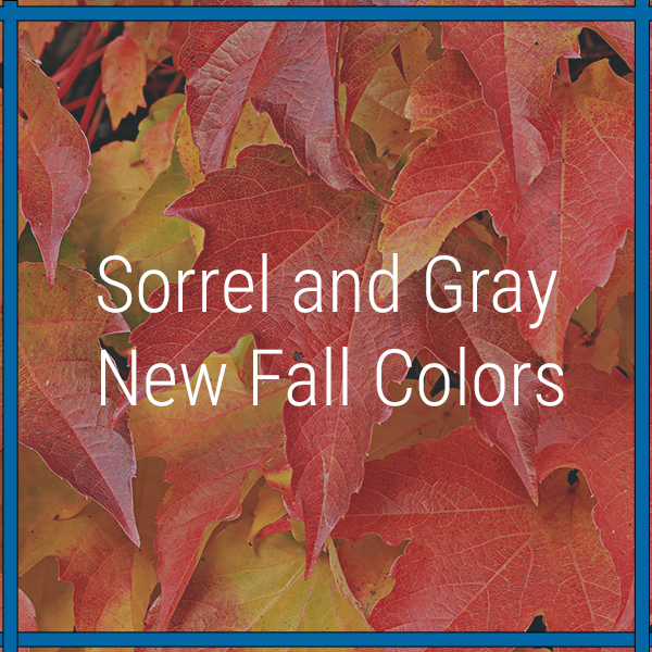 Sorrel and Gray | New Fall Colors