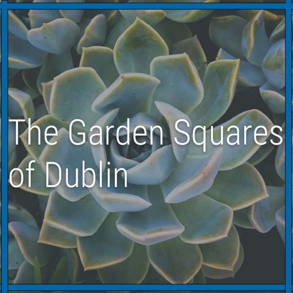 The Garden Squares of Dublin